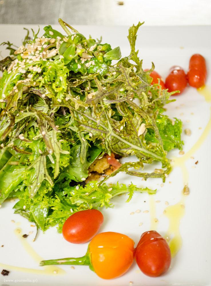 salata-baxevanis
