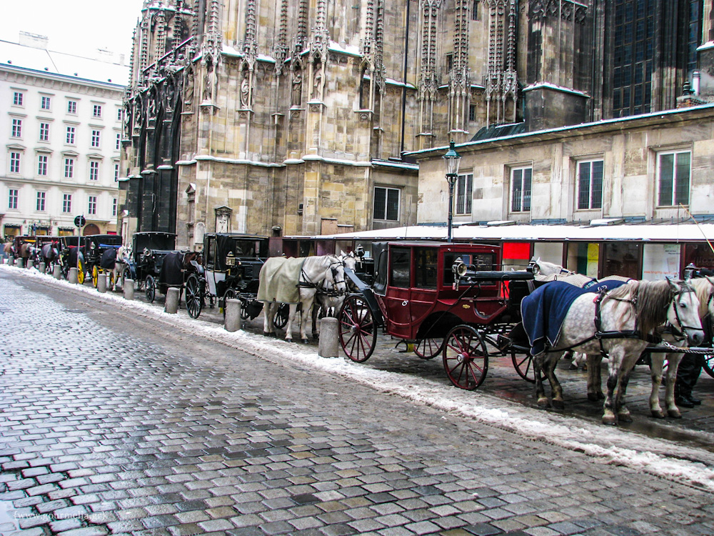 wien-Horse-drawn carriages